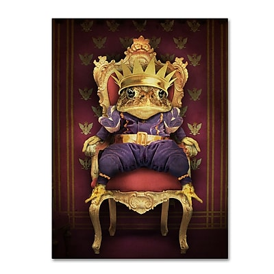 Trademark Fine Art ''The Frog Prince'' by J Hovenstine Studios 35