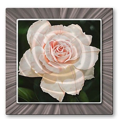 All My Walls 'Rose' by Ora Sorenson Graphic Art Plaque