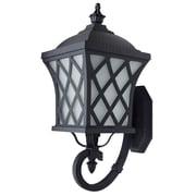 Beldi Brevent 1-Light Outdoor Wall Lantern