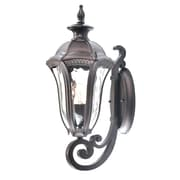Beldi Sutton 1-Light Outdoor Wall Lantern