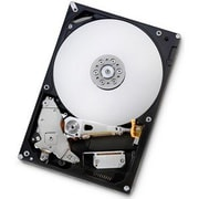 "HGST-IMSourcing NEW Deskstar E7K1000 HDE721010SLA330 1 TB 3.5"" Internal Hard Drive"