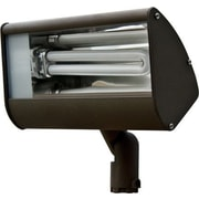 Dabmar Lighting 1-Light Flood Light; Bronze