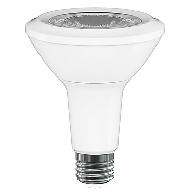 Northern Stars 80458 LED PAR30 12W, Dimmable, White