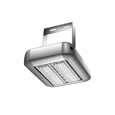 Innoled Lighting 100W LED High Bay Light