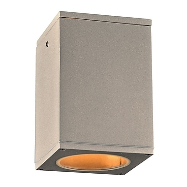 PLC Lighting Dominick 1-Light Outdoor Flush Mount; Silver
