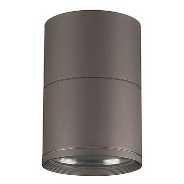 PLC Lighting Troll 1-Light Outdoor Flush Mount; Bronze