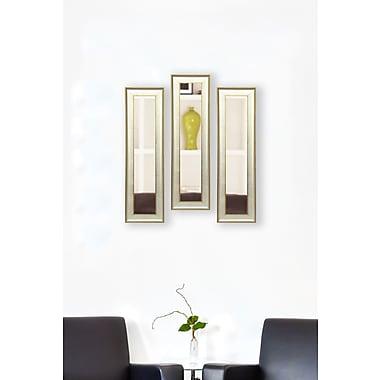 Rayne Mirrors Molly Dawn Vintage Silver Mirror Panels (Set of 3); 19.5'' H x 7.5'' W x 1.25'' D