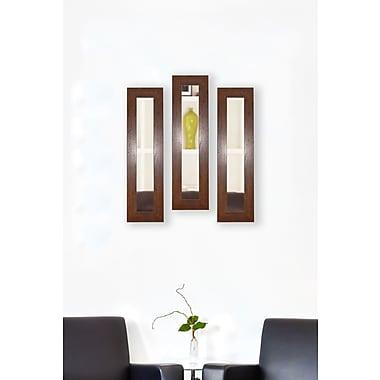 Rayne Mirrors Molly Dawn Dark Walnut Rustic Mirror Panels (Set of 3); 32.5'' H x 11.5'' W x 0.75'' D