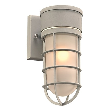 PLC Lighting Cage 1-Light Outdoor Sconce; Silver