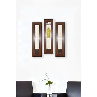 Rayne Mirrors Molly Dawn Dark Walnut Rustic Mirror Panels (Set of 3); 21.5'' H x 9.5'' W x 0.75'' D