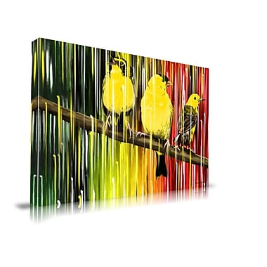 Maxwell Dickson ''Three Little Birds'' Painting Print on Canvas; 36'' H x 48'' W