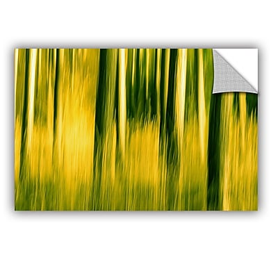 ArtWall Camera Shake 2 by Lindsey Janich Removable Painting Print; 16'' H x 24'' W