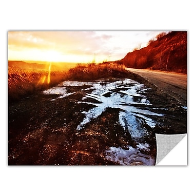 ArtWall Roadside by Revolver Ocelot Removable Photographic Print; 16'' H x 24'' W
