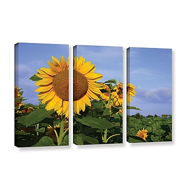 ArtWall Sunflower by Lindsey Janich 3 Piece Photographic Print on Wrapped Canvas Set