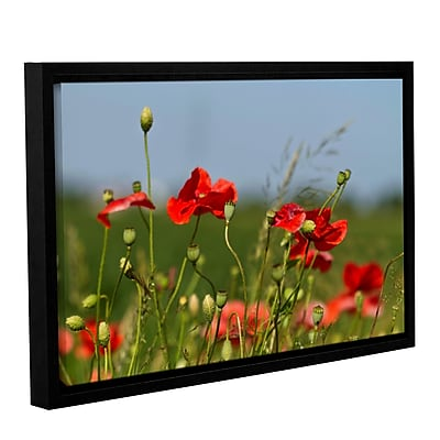 ArtWall 3097A by Lindsey Janich Framed Photographic Print on Wrapped Canvas; 24'' H x 36'' W