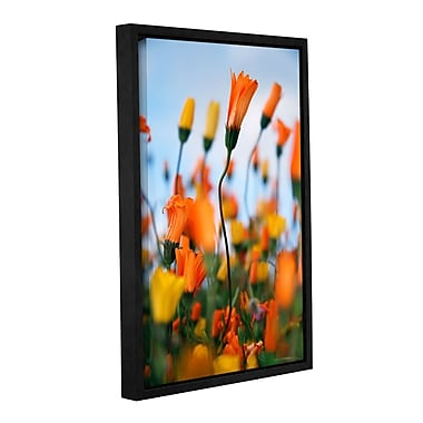 ArtWall African Daisy 2 by Elena Ray Framed Photographic Print on Wrapped Canvas; 24'' H x 16'' W