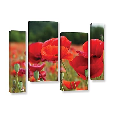 ArtWall _3986 by Lindsey Janich 4 Piece Photographic Print on Wrapped Canvas Staggered Set