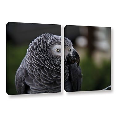 ArtWall Parrot by Lindsey Janich 2 Piece Photographic Print on Wrapped Canvas Set; 18'' H x 28'' W