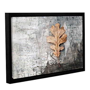 ArtWall Still Life Leaf by Elena Ray Framed Photographic Print on Wrapped Canvas; 32'' H x 48'' W