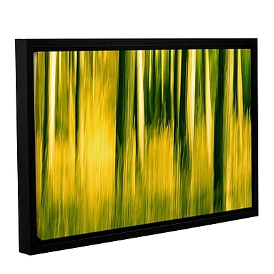 ArtWall Camera Shake 2 by Lindsey Janich Framed Graphic Art on Wrapped Canvas; 24'' H x 36'' W