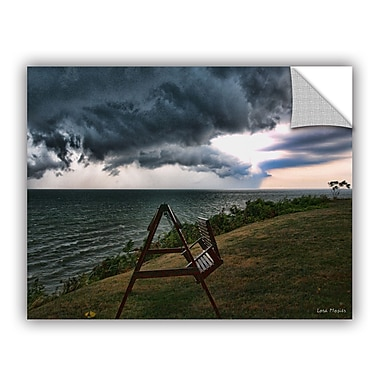 ArtWall Polterstorm or Thundergeist by Lora Mosier Photographic Print; 18'' H x 24'' W