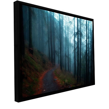 ArtWall Woods by Revolver Ocelot Framed Photographic Print on Wrapped Canvas; 12'' H x 18'' W