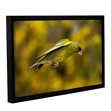 ArtWall C by Lindsey Janich Framed Photographic Print on Wrapped Canvas; 32'' H x 48'' W