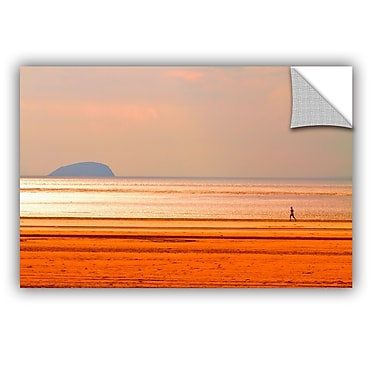 ArtWall 5479Aatop1 by Lindsey Janich Removable Photographic Print; 16'' H x 24'' W