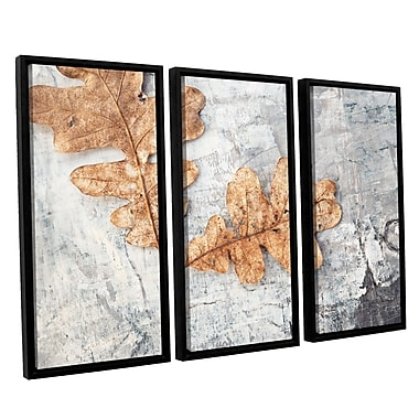 ArtWall Still Life Two Leaves by Elena Ray 3 Piece Framed Photographic Print on Canvas Set