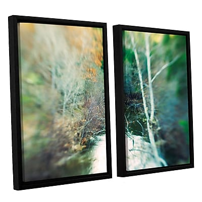 ArtWall Calm River by Elena Ray 2 Piece Framed Photographic Print on Canvas Set; 24'' H x 36'' W