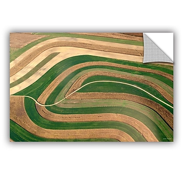 ArtWall Cropped Crops by Lora Mosier Removable Photographic Print; 12'' H x 18'' W