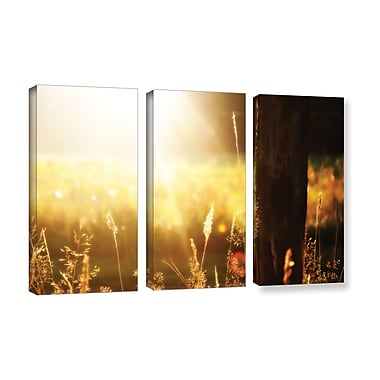 ArtWall 'Summertime' by Revolver Ocelot by 3 Piece Photographic Print on Wrapped Canvas Set