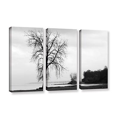 ArtWall 'Im Right On The Edge' by Lora Mosier 3 Piece Photographic Print on Wrapped Canvas Set