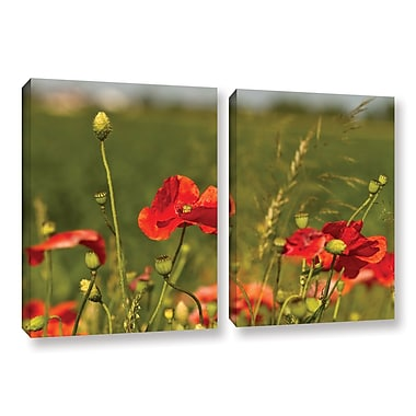ArtWall 3114A by Lindsey Janich 2 Piece Photographic Print on Wrapped Canvas Set; 32'' H x 48'' W