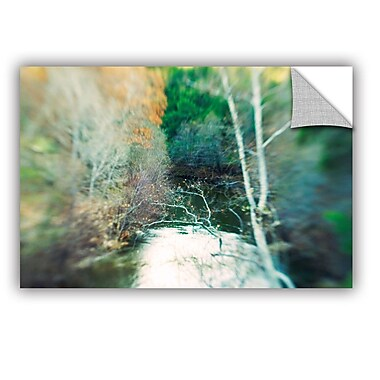 ArtWall Calm River by Elena Ray Removable Graphic Art; 16'' H x 24'' W