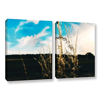 ArtWall Field by Revolver Ocelot 2 Piece Photographic Print on Wrapped Canvas Set; 24'' H x 36'' W