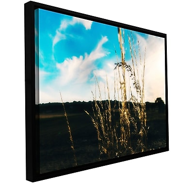 ArtWall Field by Revolver Ocelot Framed Photographic Print on Wrapped Canvas; 32'' H x 48'' W