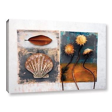 ArtWall Conch, Magnolia, Thistle by Elena Ray Photographic Print on Wrapped Canvas; 12'' H x 18'' W