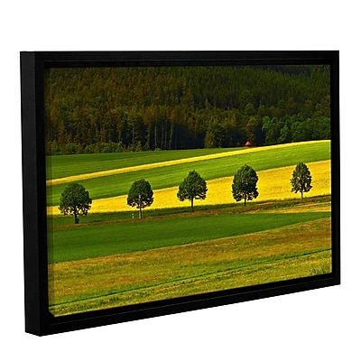 ArtWall 5026Aaa1 by Lindsey Janich Framed Photographic Print on Wrapped Canvas; 12'' H x 18'' W