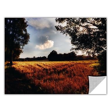 ArtWall Farmville by Revolver Ocelot Photographic Print; 24'' H x 36'' W