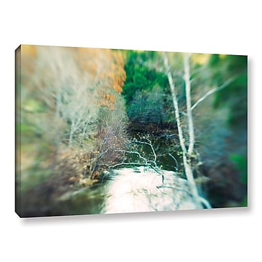 ArtWall Calm River by Elena Ray Graphic Art on Wrapped Canvas; 32'' H x 48'' W