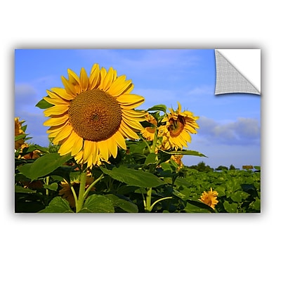 ArtWall Sunflower by Lindsey Janich Removable Photographic Print; 16'' H x 24'' W