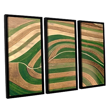 ArtWall 'Cropped Crops' by Lora Mosier 3 Piece Framed Photographic Print on Canvas Set