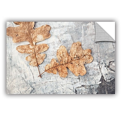 ArtWall Still Life Two Leaves by Elena Ray Photographic Print; 12'' H x 18'' W