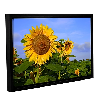 ArtWall Sunflower by Lindsey Janich Framed Photographic Print on Wrapped Canvas; 32'' H x 48'' W
