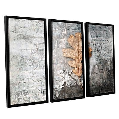 ArtWall Still Life Leaf by Elena Ray 3 Piece Framed Photographic Print on Canvas Set