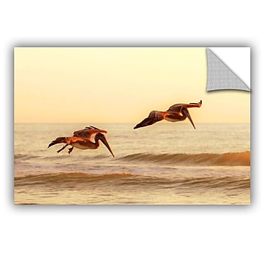ArtWall Pelicans At Sunset by Lindsey Janich Removable Photographic Print; 32'' H x 48'' W