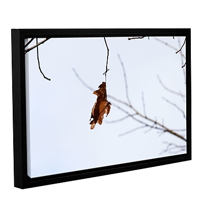ArtWall Lora Mosier's Framed Photographic Print on Wrapped Canvas; 16'' H x 24'' W