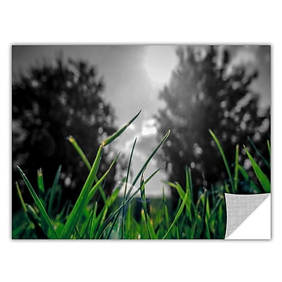 ArtWall Grass by Revolver Ocelot Graphic Art; 12'' H x 18'' W