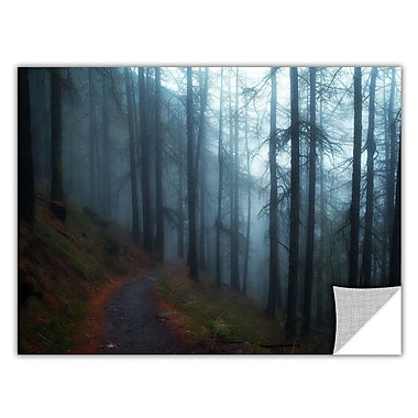 ArtWall Woods by Revolver Ocelot Photographic Print; 24'' H x 36'' W